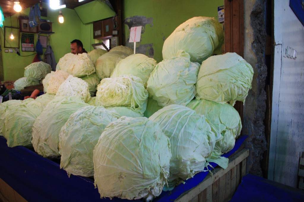 trabzon cabbages
