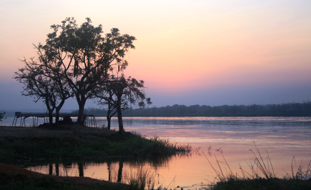 View of the White Nile at Paraa Ferry Crossing - on the way to the early morning game drive.